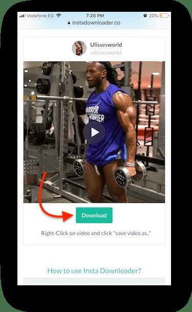 How to Download Instagram Videos on iPhone - InstaDownloader